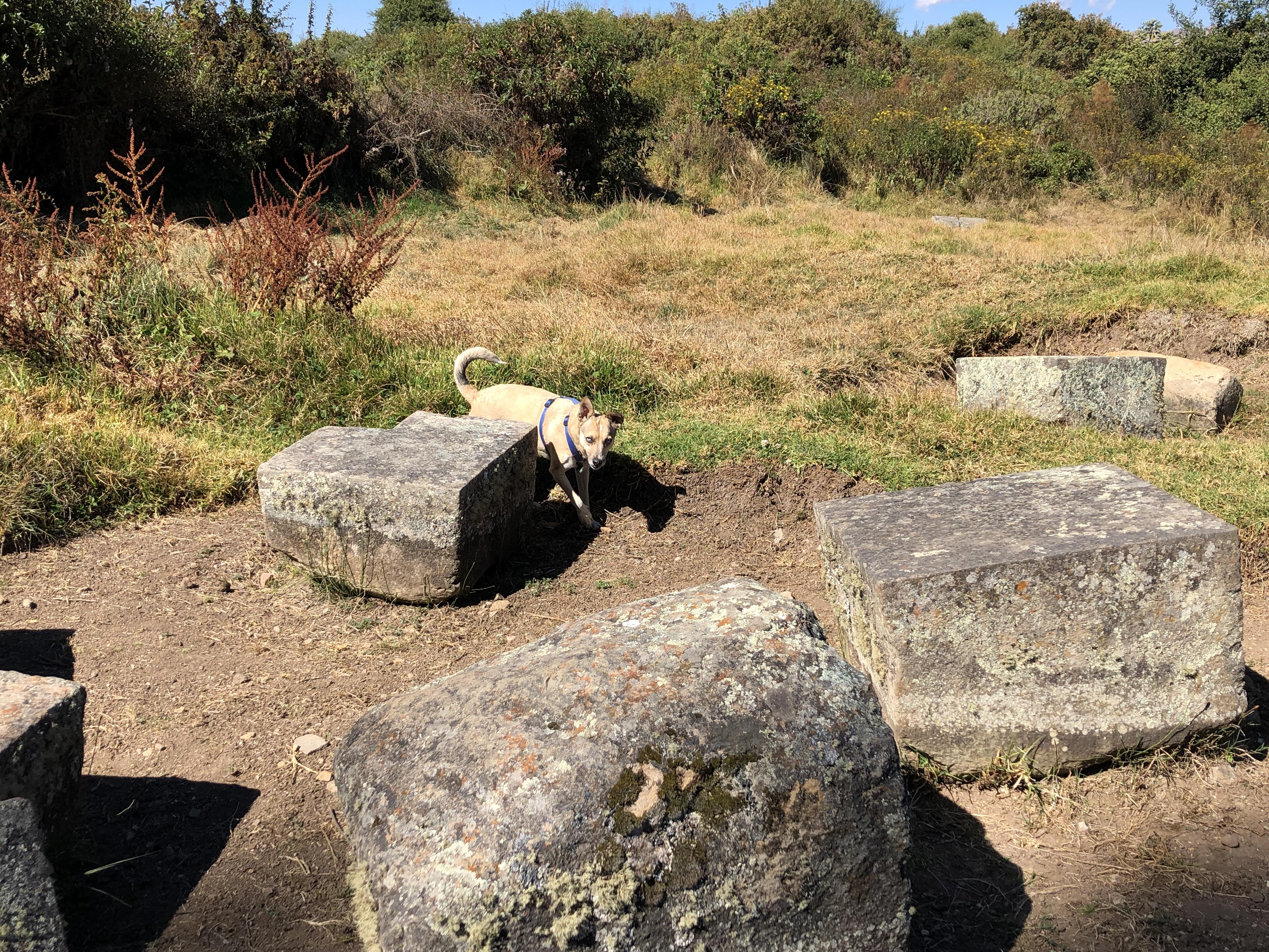 saywite ruins carved rocks