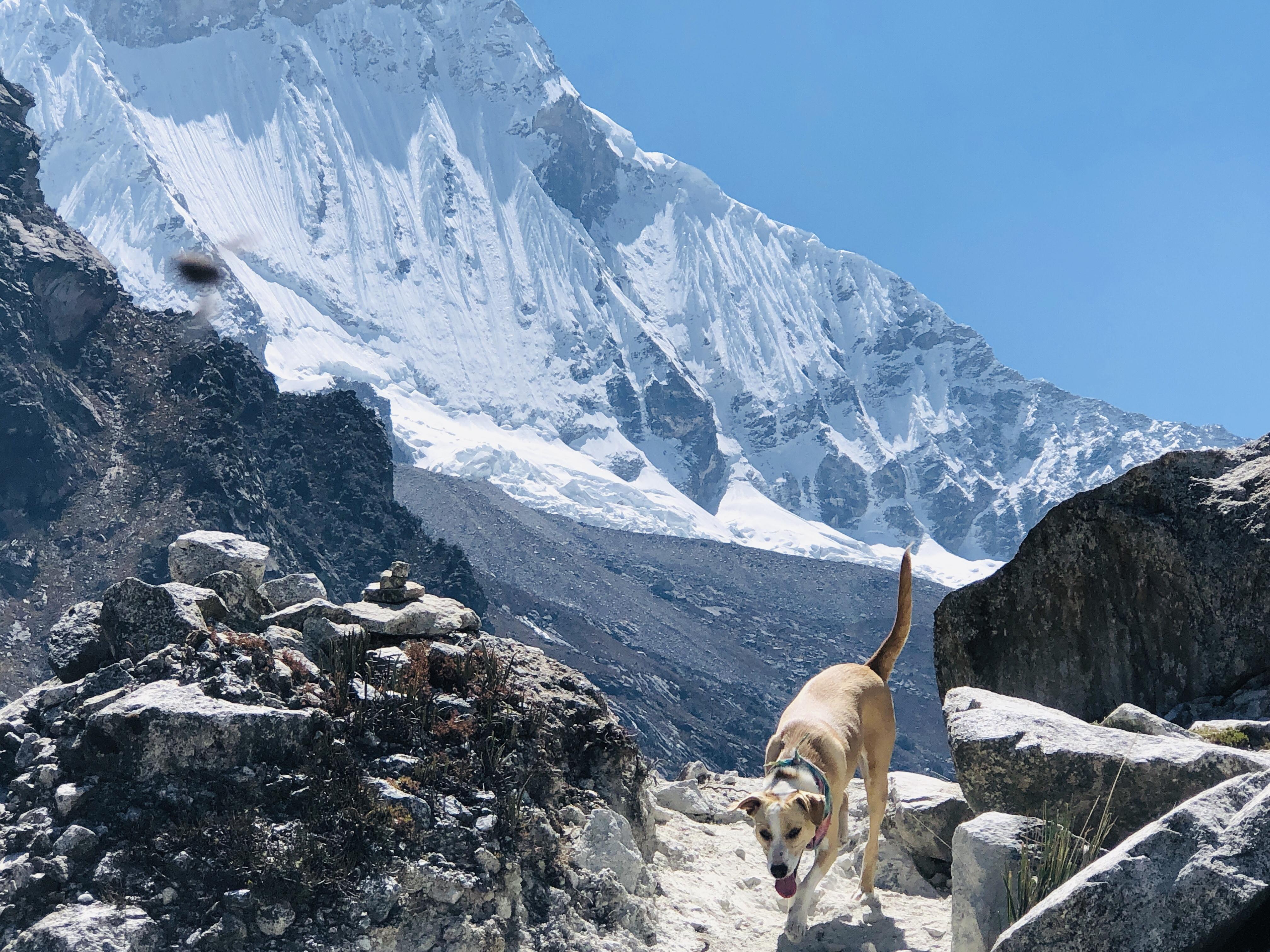laguna paron pacha in front of glacier.JPG