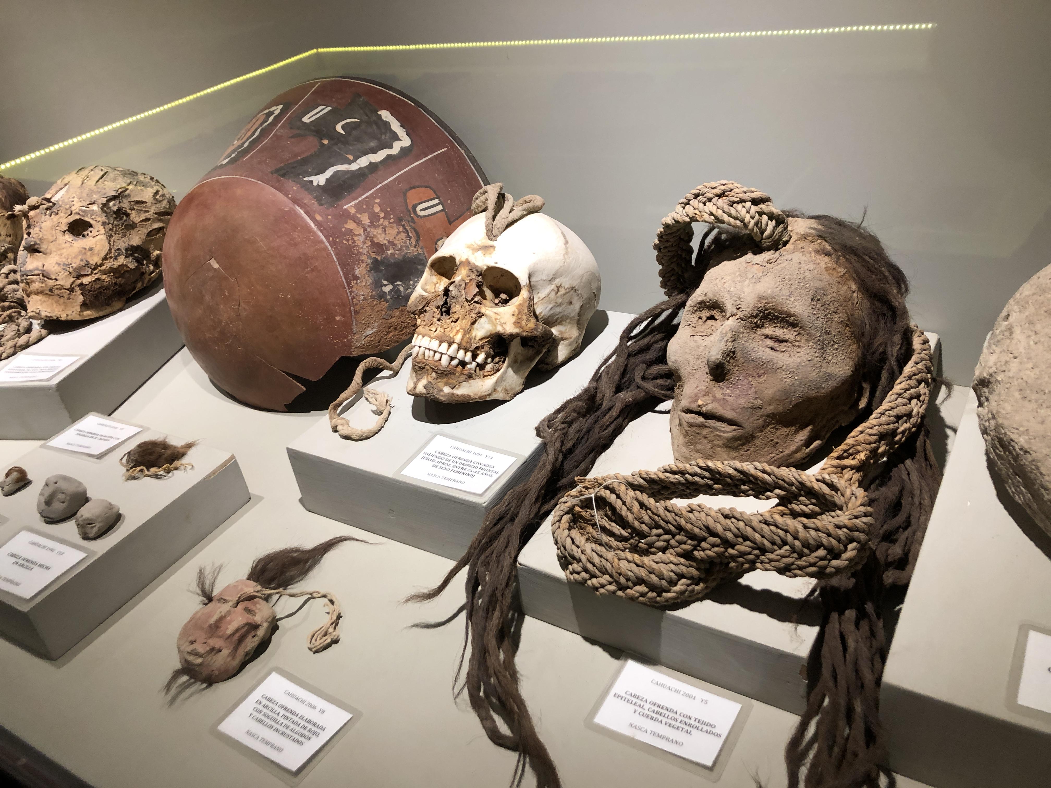 museum nazca mummy heads