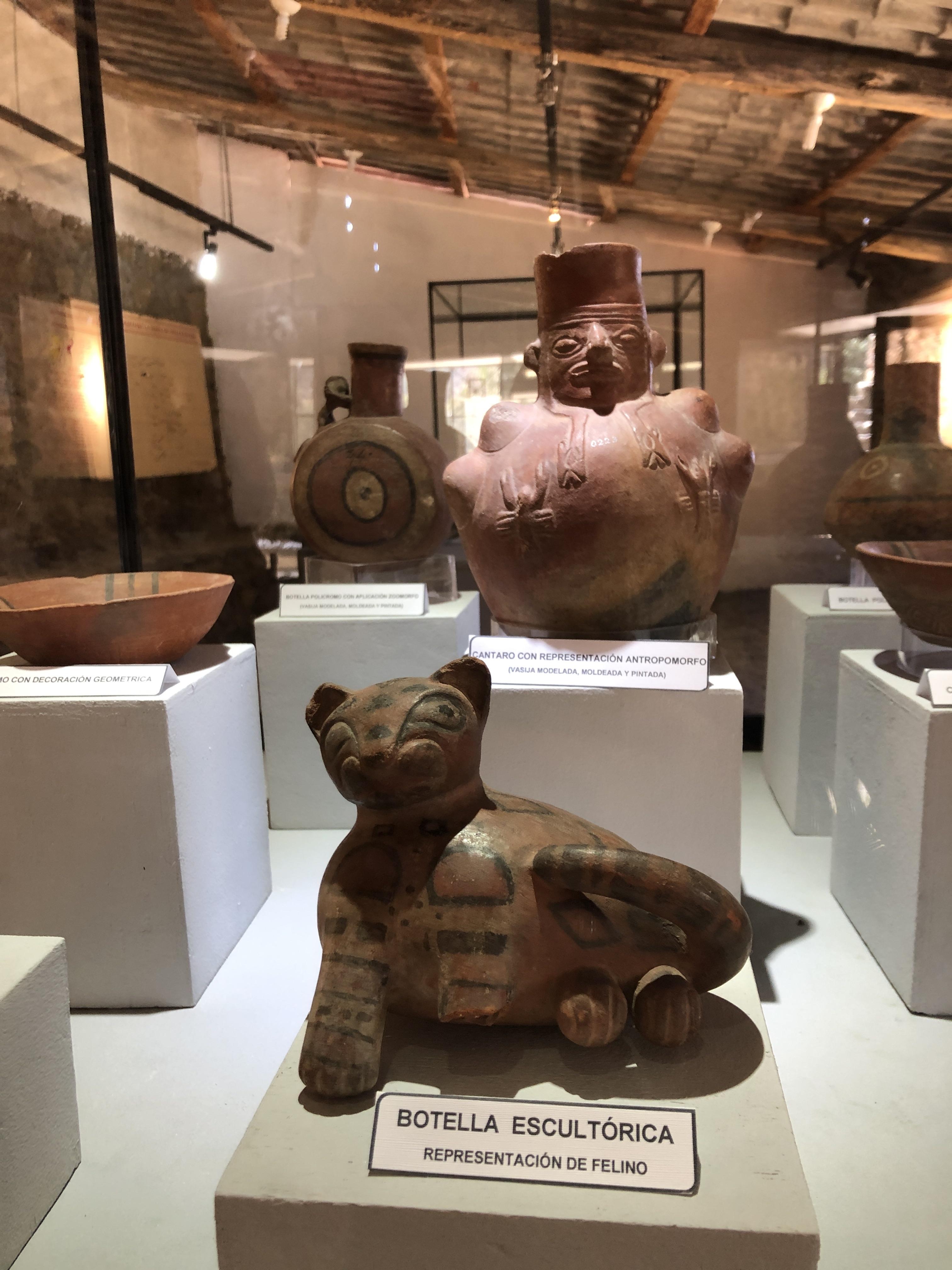 wilkawain museum cat