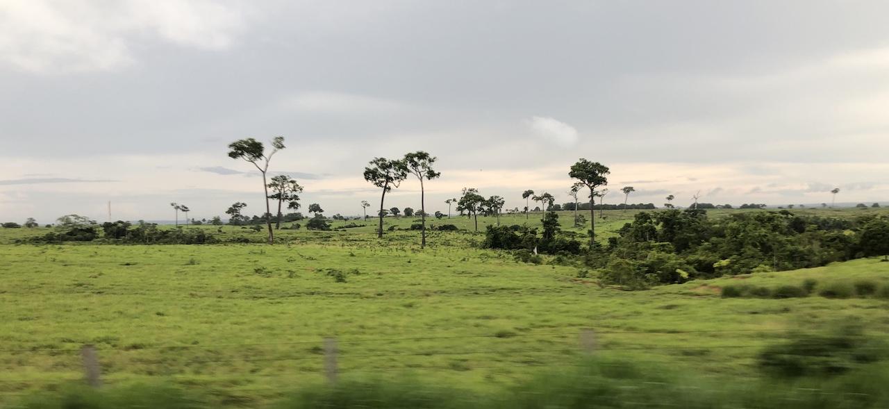 scenery.JPG