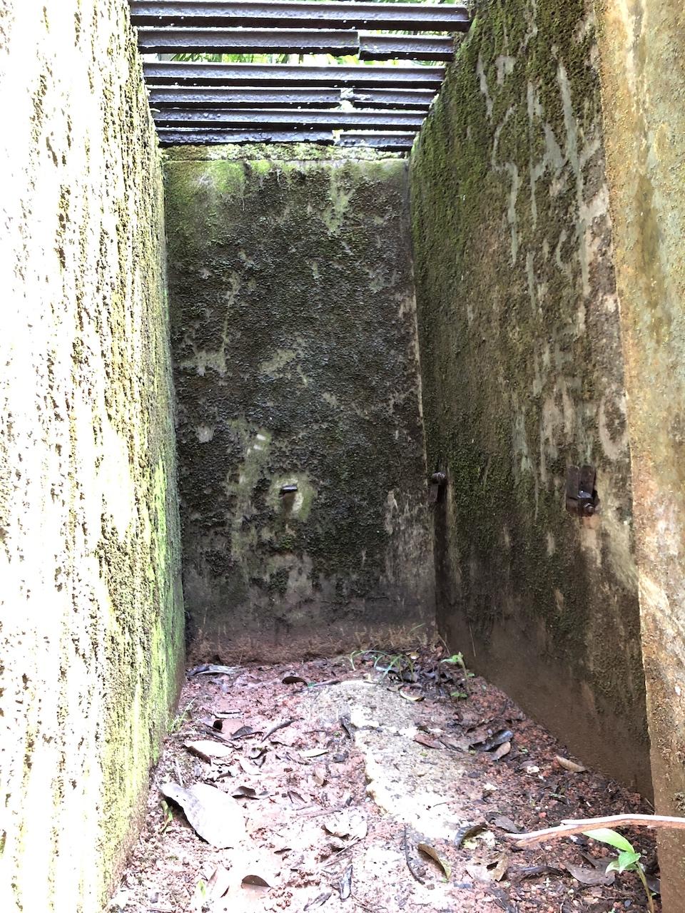 jungle prison room.jpg